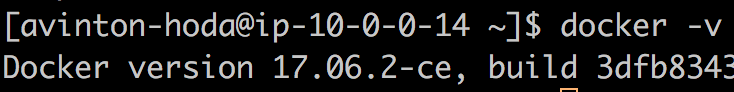 dockerのバージョン情報を確認
