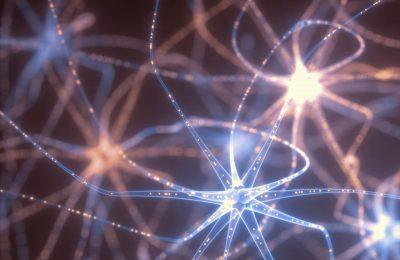 Deep Learning Neural Network