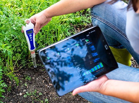 Data analysis and IoT in agriculture