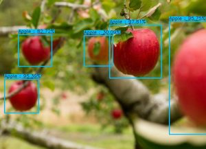 Object counting with the Avinton Edge AI Camera